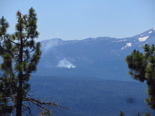 small forest fire