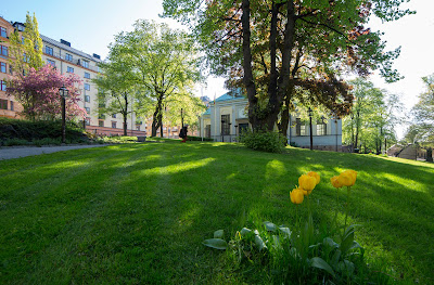 Kungsholms kyrka 94