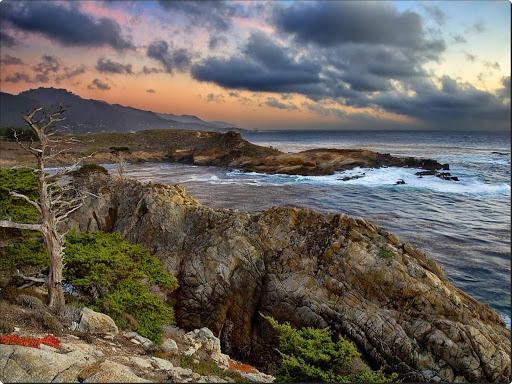 Headland Cove, Point Lobos, California.jpg
