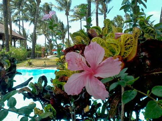 The Andamania Resort Khaolak, 63 Moo 3, Tambol Khuk Khak, Khao Lak, 82190, Thailand