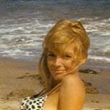 Lynda Faye