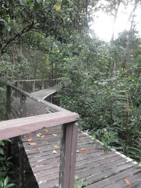 Taman-Negara-Similajau-National-Park