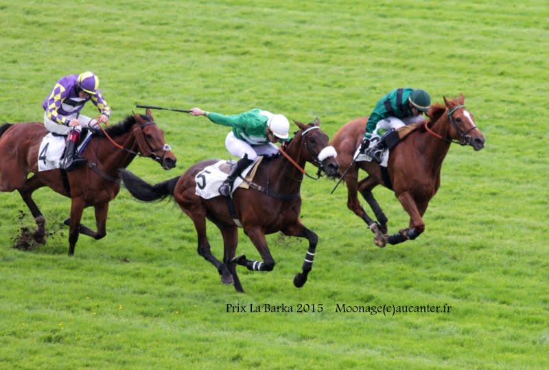 Photos Auteuil 16-05-2015 Week-end printanier de l'obstacle  IMG_9434