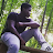 Sulaiman Bah avatar image