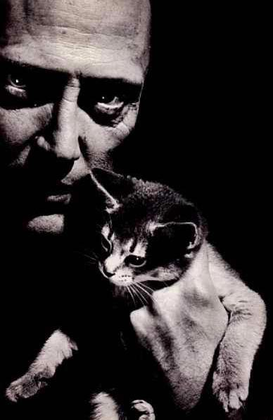 Christopher Walken and a cat