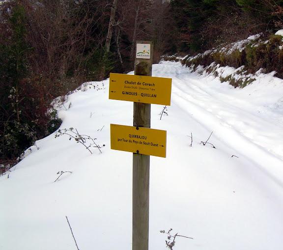 Snowy paths