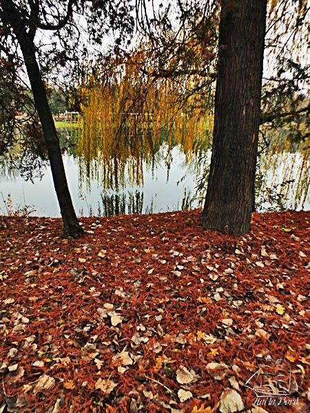 lac parc constantin stere ploiesti