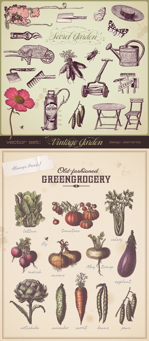 Stock: Vintage garden design elements
