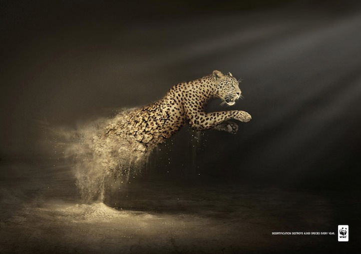 Amazing Ad Campaign By WWF: Desertification Disintegrates Animals-leopards