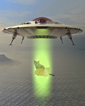 #area51 @petiethecat is gonna help me take over da UFO!