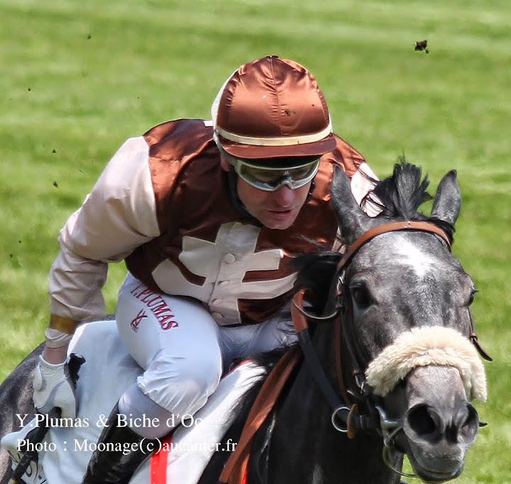 Jockeys' attitudes IMG_0681%2520-%2520Copie