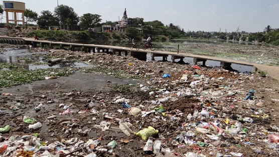 Polluted Adyar river