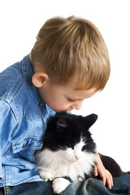 The little boy and cat