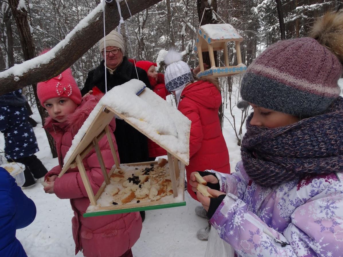 Покормите птиц зимой