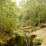 Small waterfall in the Boarding House Dam Creek in the Watagans. (322592)