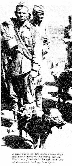 Cães anti-tanques das tropas soviéticas