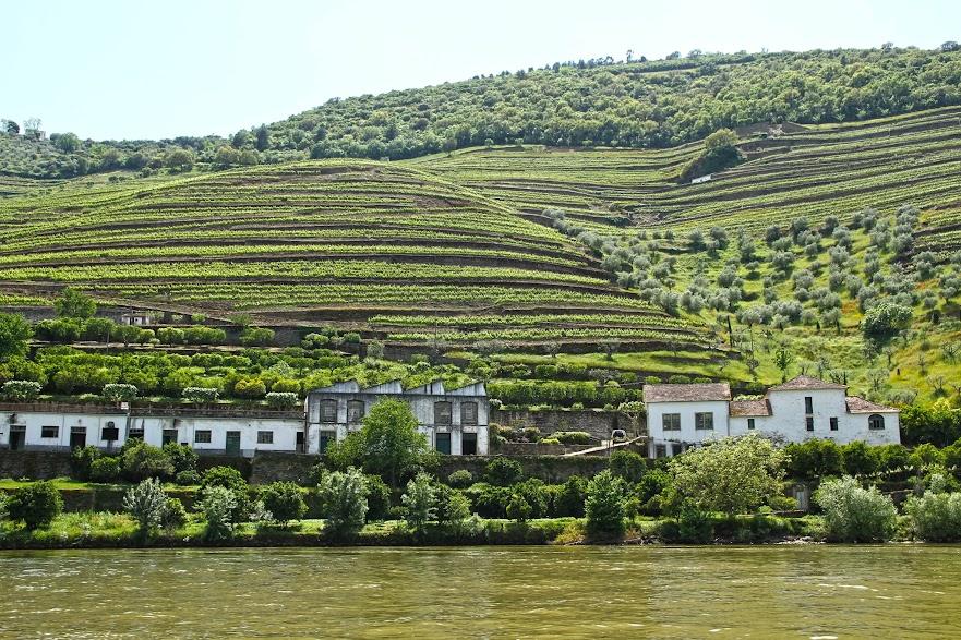 DICAS para o DOURO VINHATEIRO (Pinhão) | Portugal