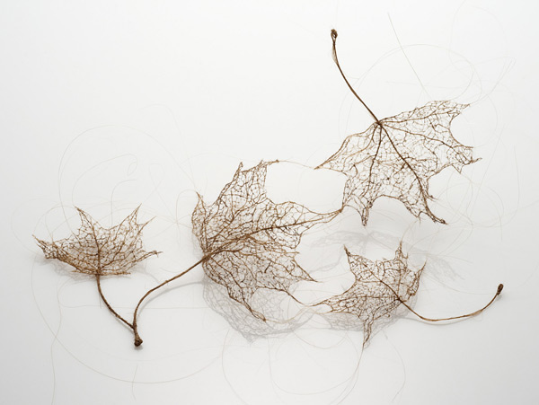leaves 1 Awesome Tree Leaves Made Of Stitched And Knotted Human Hair By Jenine Shereos [PICS]