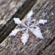 Сугроб или снегопад во сне