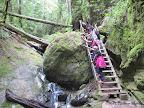 Ladder along Steep Ravine Trail