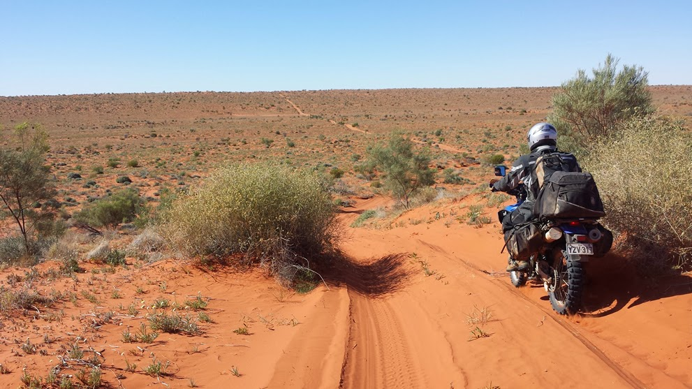 birdsville guys The team of 13 men and seeds from a waddi tree found in the diary of wills verify their passage through the birdsville region the burke and wills tree is.
