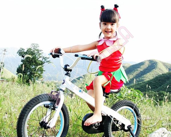 Xe đạp Royalbaby RB12-16