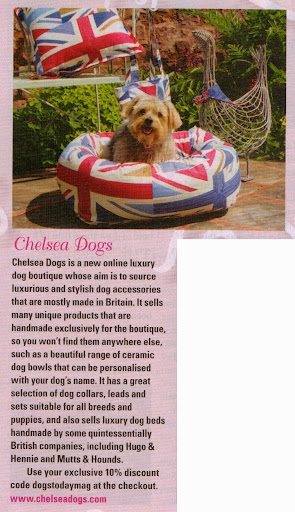 Chelsea Dogs featured in Dogs Today Magazine Chic Boutiques September 2012