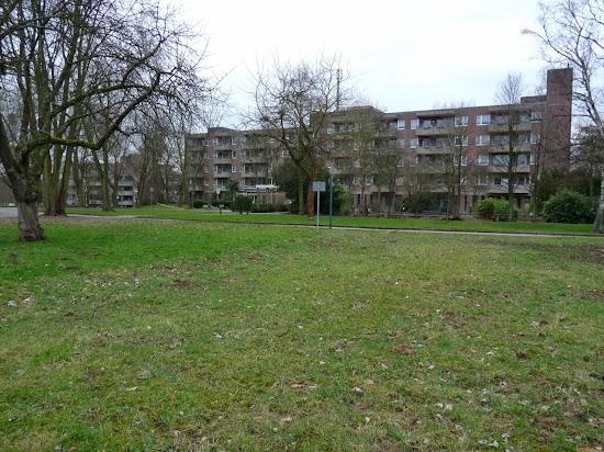 Parklandschaft, Häuser im Hintergrund.