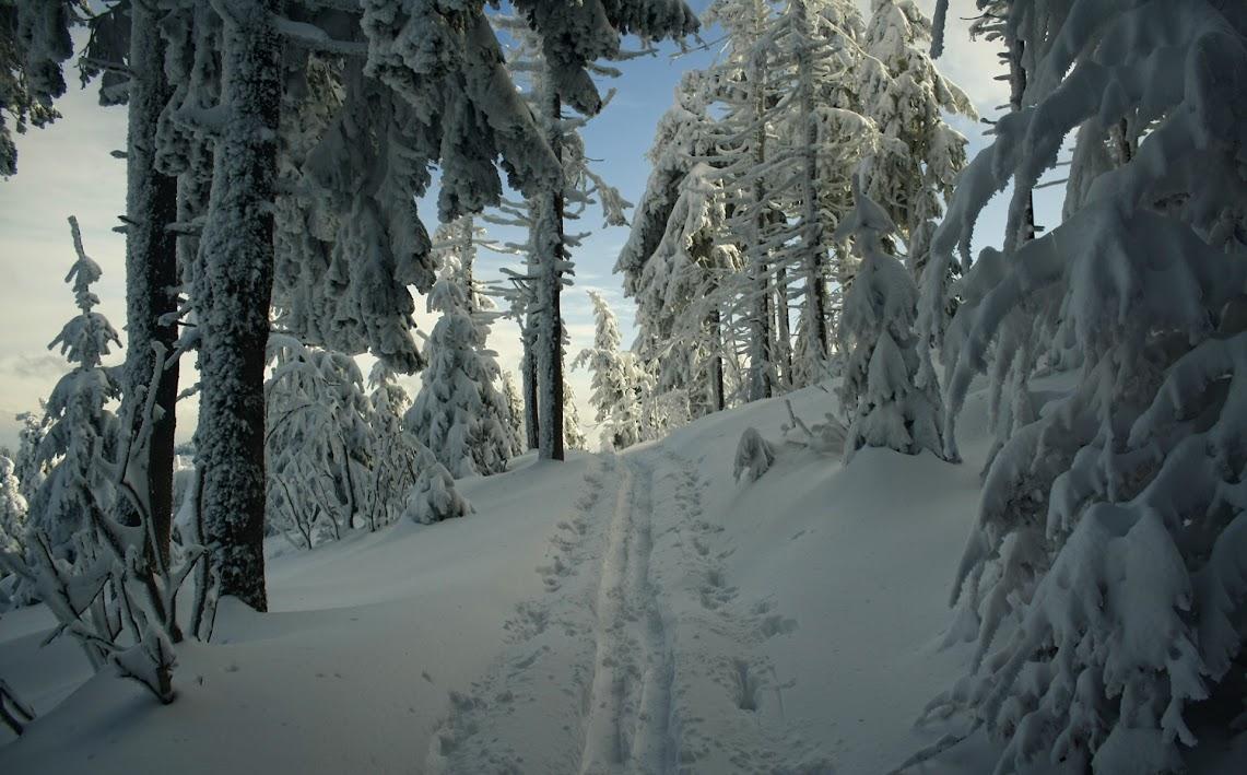 Radziejowa zimą