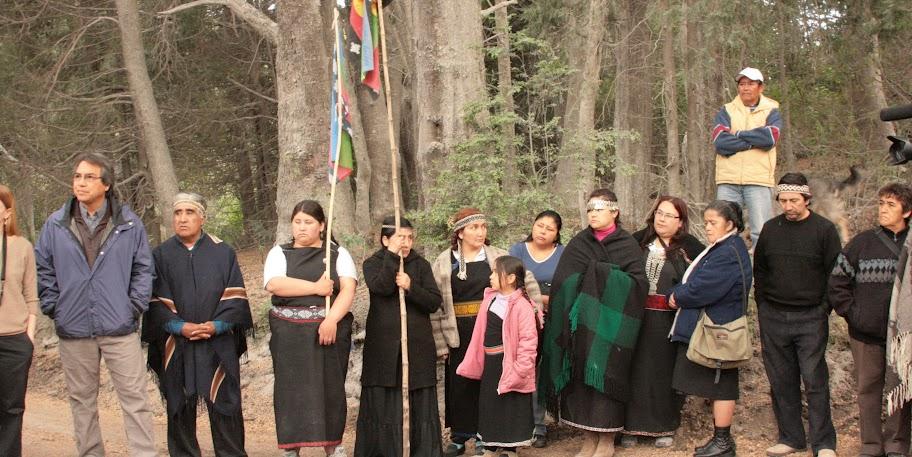 ginobilli mapuches