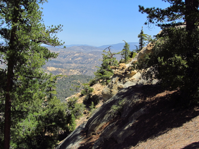 a bit of the ridge