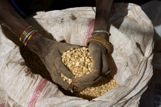 kelaparan di dunia http://www.opoae.com/2013/03/fakta-fakta-tentang-kelaparan-di.html