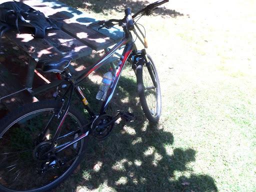 ホノルルの街を自転車でウロウロ彷徨う -オアフ島をサイクリング(1)