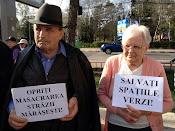Opriţi masacrarea străzii Mărăşeşti - Protest împotriva distrugerii spaţiilor verzi din Suceava