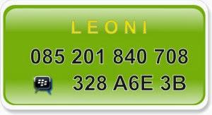 Leoni 085201840708 PIN BB 382A6E3B