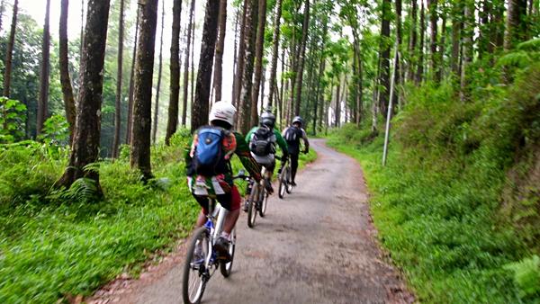 Trek untuk menuju Kraton Gunung Kawi adalah aspal yang agak rusak. Selain itu, jalanan juga menanjak. Membuat kami harus ekstra keras dalam mengayuh sepeda.