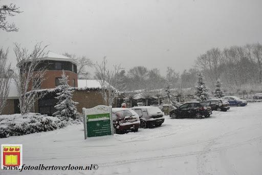 eerste sneeuwval in overloon 07-12-2012  (23).JPG
