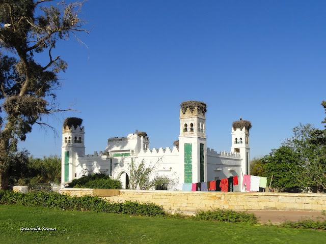 marrocos - Marrocos 2012 - O regresso! - Página 9 DSC08040