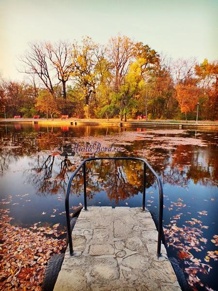 ponton lac parc crang buzau