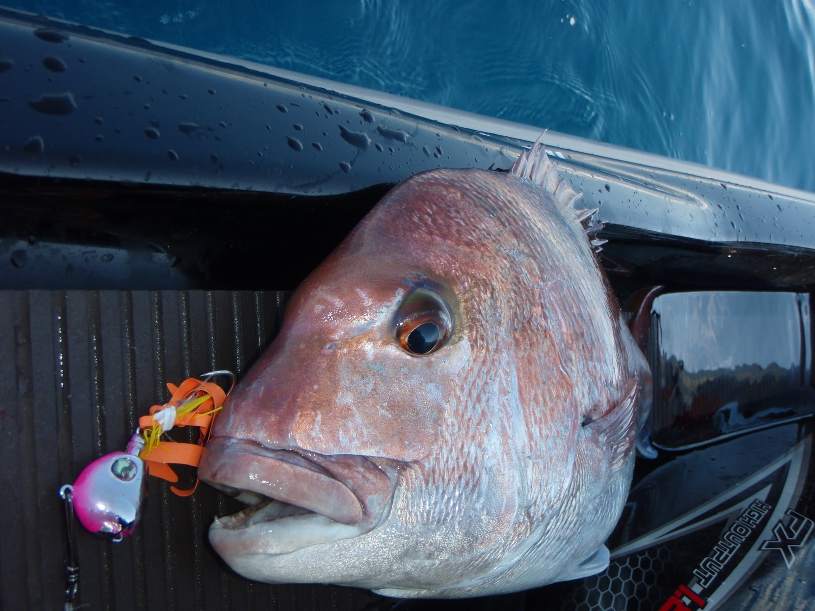Jet Ski Fishing Blog Report 029 Foreign Territory With