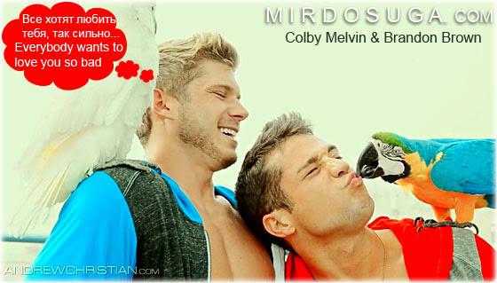 Счастливые Colby Melvin и Brandon Brown (модели Andrew Christian)