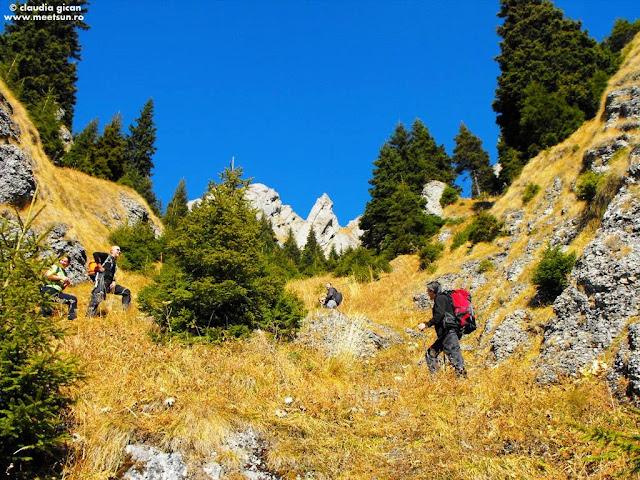 Ciucas: traseu nemarcat pe Valea Gropsoarelor