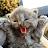 Choi Ha Yau avatar image