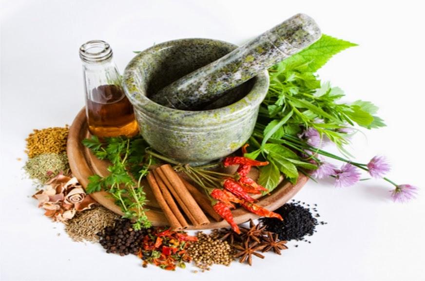 Obat Herbal Pelangsing Tubuh Alami Dan Aman