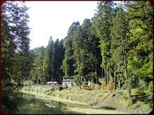 杉林溪美景
