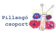 Pillangó csoport