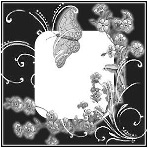 DS-Butterfly2.jpg