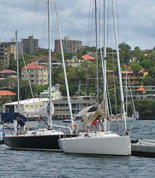 J/100 day sailing sailboats- docked in Sydney Harbour, Australia