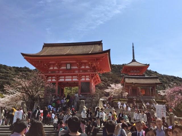 Kiyomizudera kyoto cherry blossoms