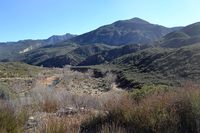 straight stretch of Sespe River
